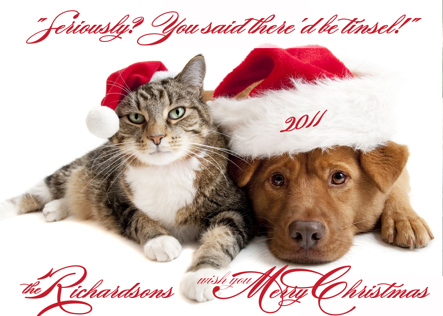 Photo Christmas Card Pets Dog Cat Pet Photo Card - 7\